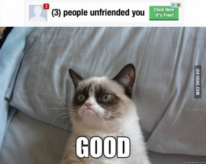 Influencer Marketing - Grumpy Cat